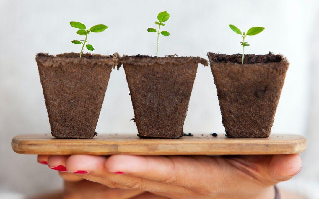 Reinventare il Business Model aziendale grazie ad una mentalità di crescita